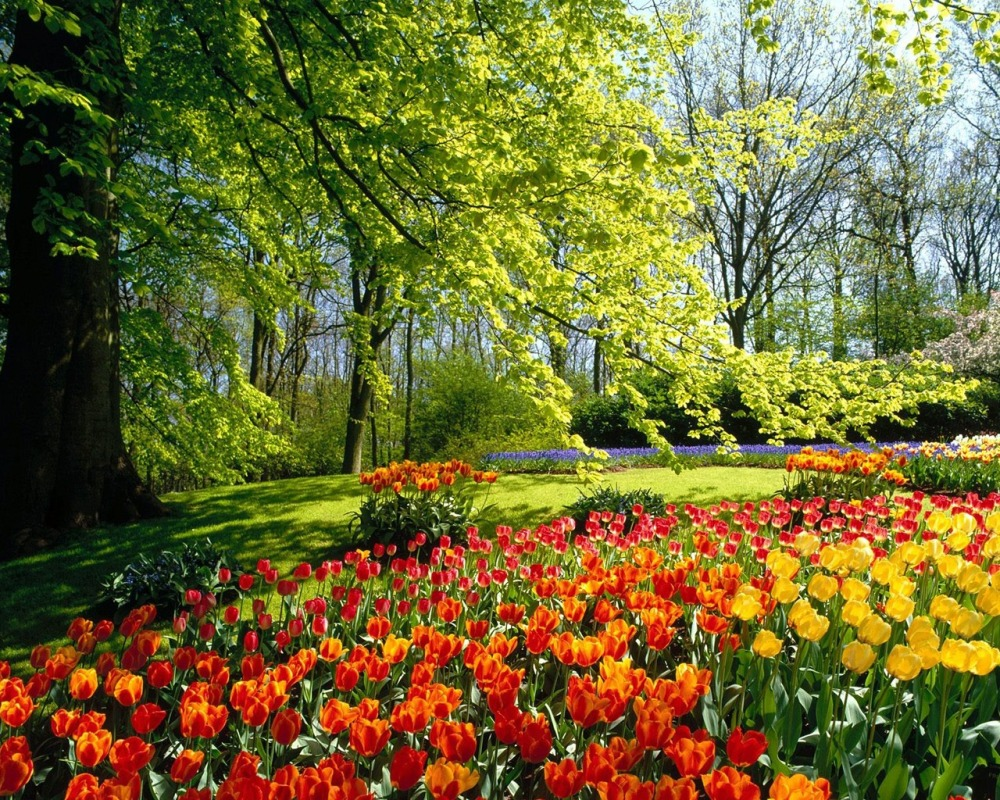 spring_7